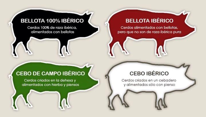 Etiqueta cerdo jamón y embutidos